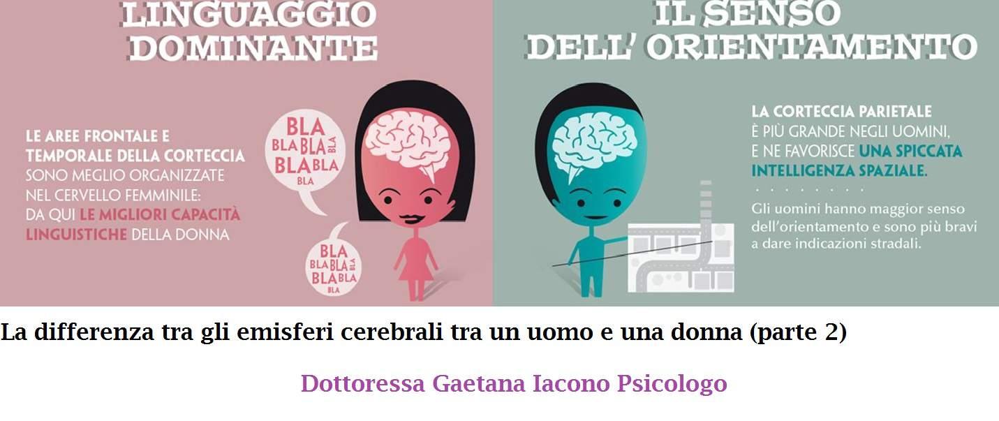 cervello femminile e maschile